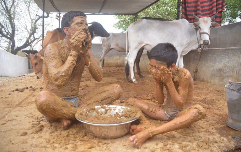- 4 CATERS BATHING IN COW DUNG FAMILY 05 768x486 1 - ໝໍອິນເດຍເຕືອນ ! ໃຊ້ຂີ້-ຍ່ຽວງົວພອກຕົວ ບໍ່ຊ່ວຍປັດເປົ່າໂຄວິດ-19